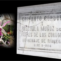 Crisanto Cordoba y Pascuala Muñoz.