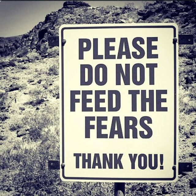 What you feed you will attract, so please, don't feed the fears