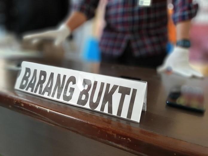 Amankan Pelaku Ilegal Logging Hutan Lindung Aceh, Petugas TNGL Diserang