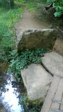 path-across-a-stream2