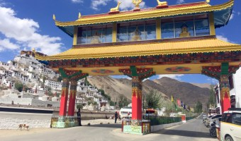 Important Tips For Your Trip To Leh Ladakh + Photos From My Tour