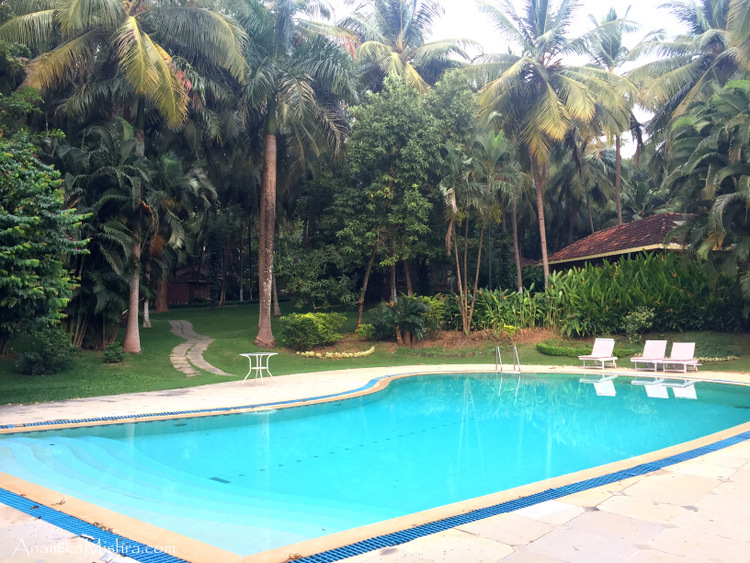 Kairali Health Resort & Spa - More Pics