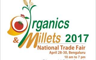 Amazing Benefits of Millets (Bajra):