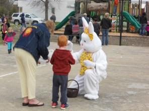 Bunny greetings