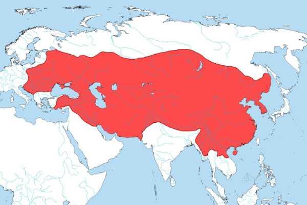جميع دول الإمبراطورية المغولية