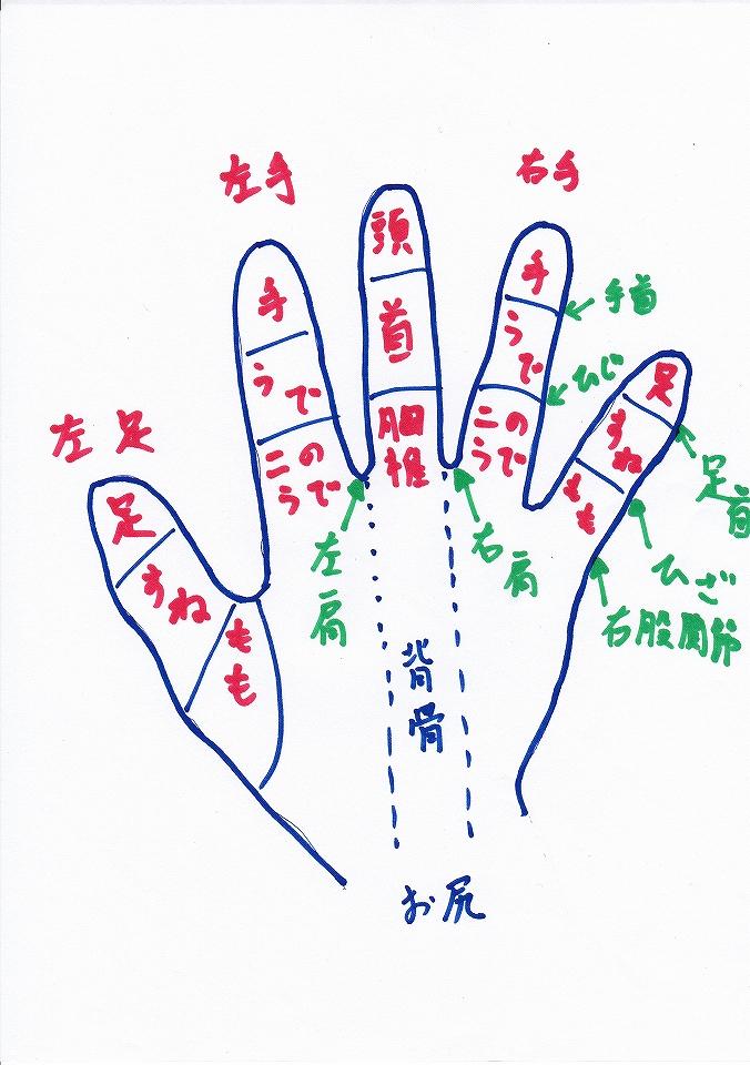 手の反射区|手のツボ|気功整体あなん