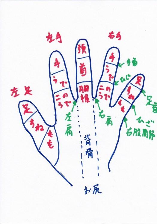 手の反射区|手のツボ