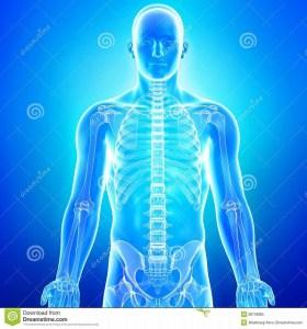 人間関係と身体の痛みの場所