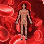 貧血など血液と性格スピリチュアルな意味