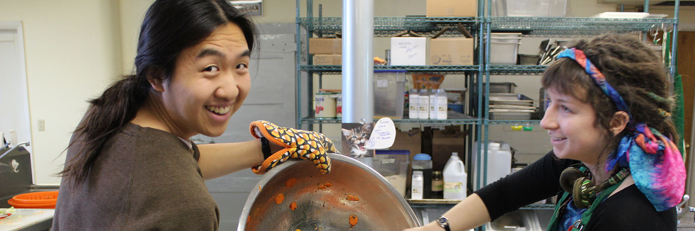 gap year students preparing a meal