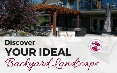 Ananda's Guide to Discover Your Perfect Backyard Landscape
