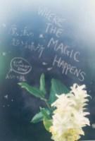 Where The Megic Happiness 「あなたの慣れている殻から出て  外側をきちんと感じること」