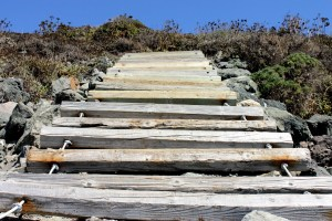 wood-slatted steps at goat rock state park beach
