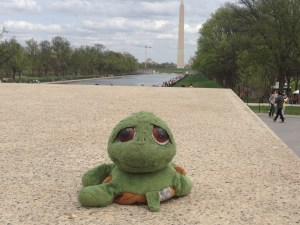 Timmy at the Washington Monument