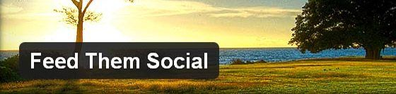 social wordpress plugin What WordPress Doesn't Tell You