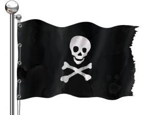 Pirate Bay flag