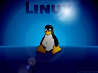 Linux Hosting Providers
