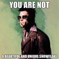 Oh no! I'm not a snowflake!