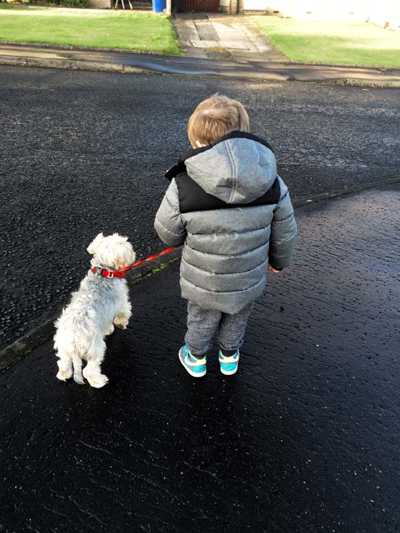 Ollie and Bobby waiting next to the road