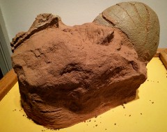 Ananyah- Hatching the Patch- Kelvingrove- Dinosaur Eggs