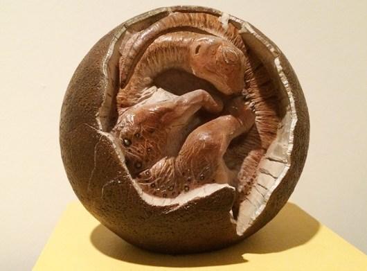 Ananyah- Hatching the Patch- Kelvingrove- Fetus Closeup