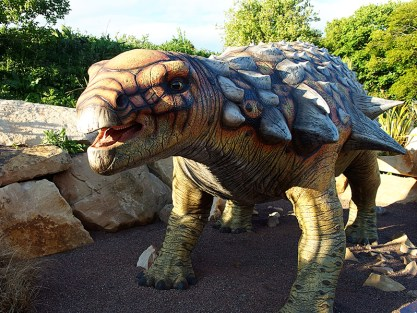 Edinburgh Zoo Nights-Edmontonia