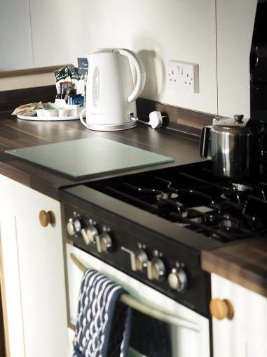 St Andrews Holiday Park with ABI Holiday Homes- Kitchen