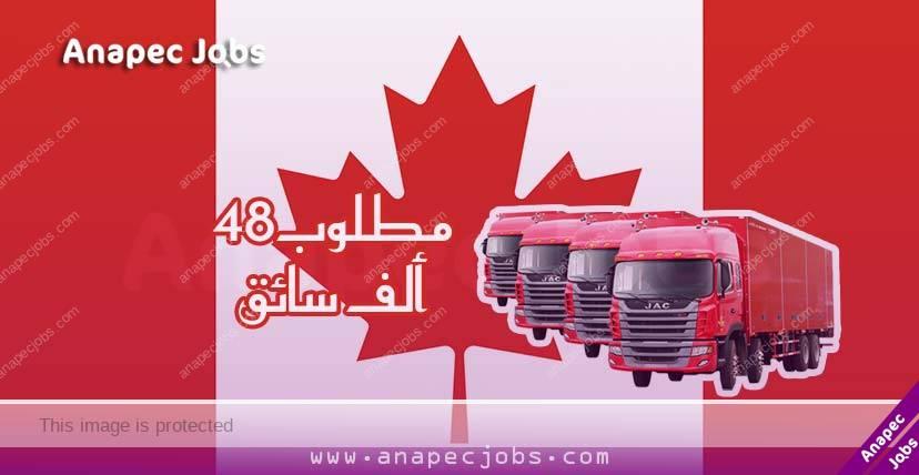 الهجرة الى كندا التي اعلنت عن حاجتها لـ 48 ألف سائق برواتب مهمة