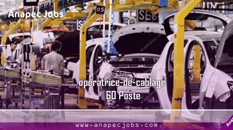 Opératrice De Câblage 60 Poste عمال الكابلاج