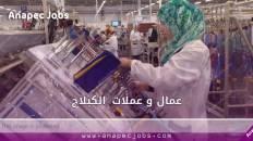 عمال كبلاج مكناس مطلوب 200 عامل وعاملة ابتداء من التاسعة إعدادي