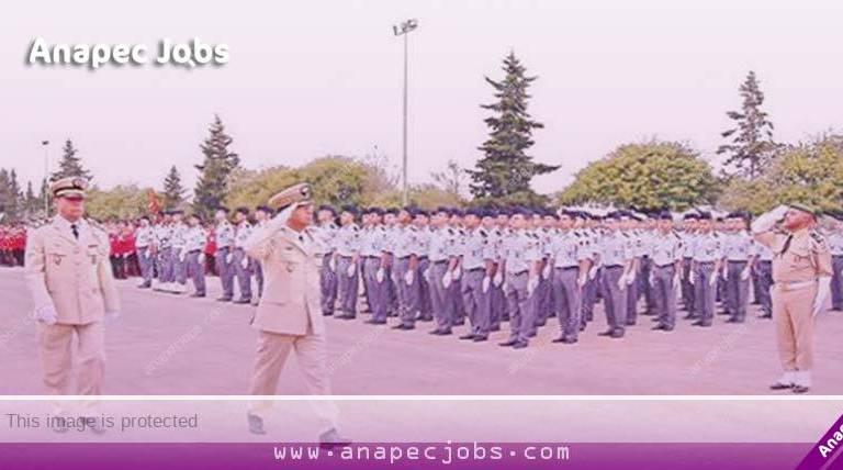 التخصصات المفتوحة أمام الذكور والإناث لمباراة ضباط الصف للقوات المسلحة الملكية 2020
