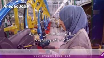 مطلوب 500 عامل وعاملة و30 مراقبين للجودةشركات الكابلاج في المغرب