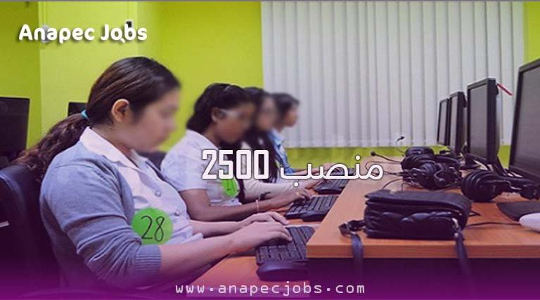 حملة تشغيل كبيرة تشمل أكثر من 2500 موظفي وموظفات إدخال البيانات في الحاسوب