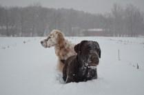 tasmin-and-nina-snow