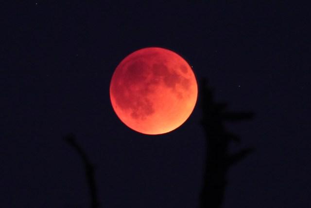 moonrise_eclipse3_sept_27_2015