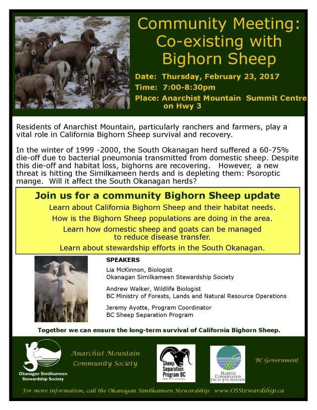 bighorn-sheep-posterfeb23