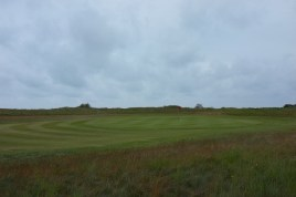 The view of the 8th green from the right-hand side rough which boarders the marsh.