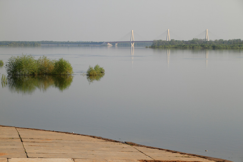Ока, Муромский вантовый мост