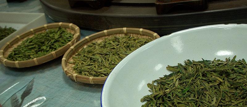 Многообразие видов чая Лунцзин