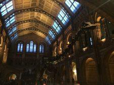 Natural History Museum e seu dinossauro clássico.