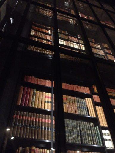 """Só uma parte da """"estante"""" de livros! Dizem que as prateleiras somam muitos quilômetros, e aumentam a cada ano!"""
