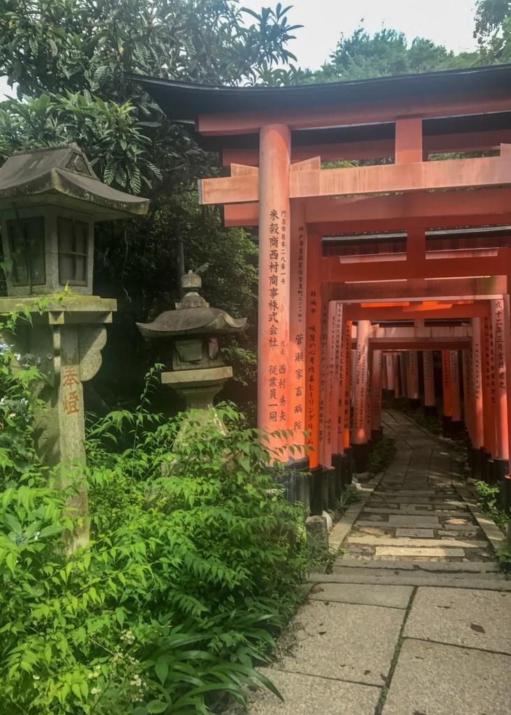 Iwatayama Monkey Park Kinkaku-ji Temple