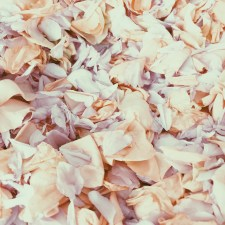 blush flowers via anastasiabenko.com
