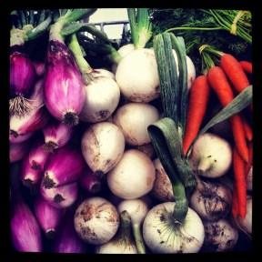 Farmer's market_purple white orange