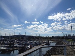 Harbour in Anacortes