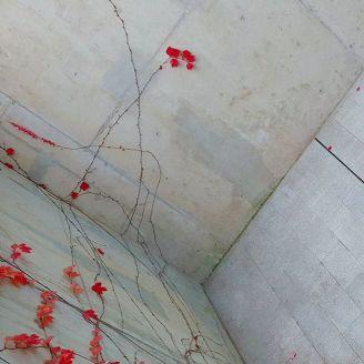 concrete square