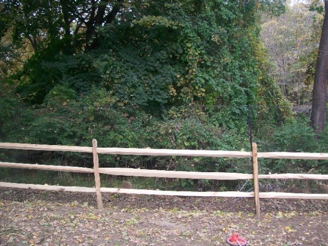 Deer Fences 4