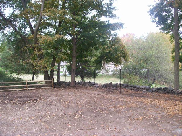 Deer Fences 9