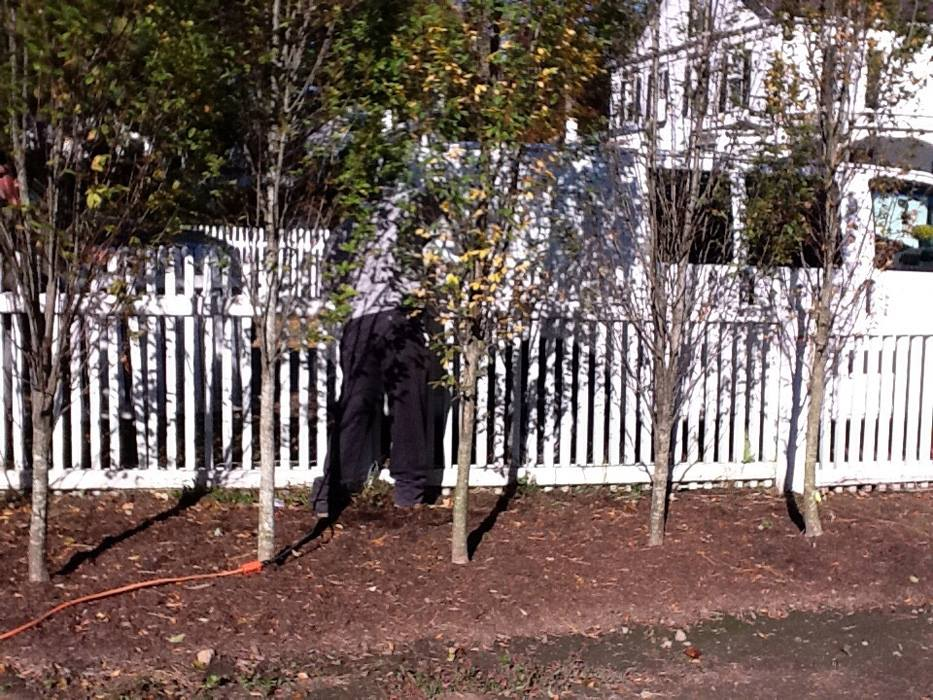 Other Fences 2