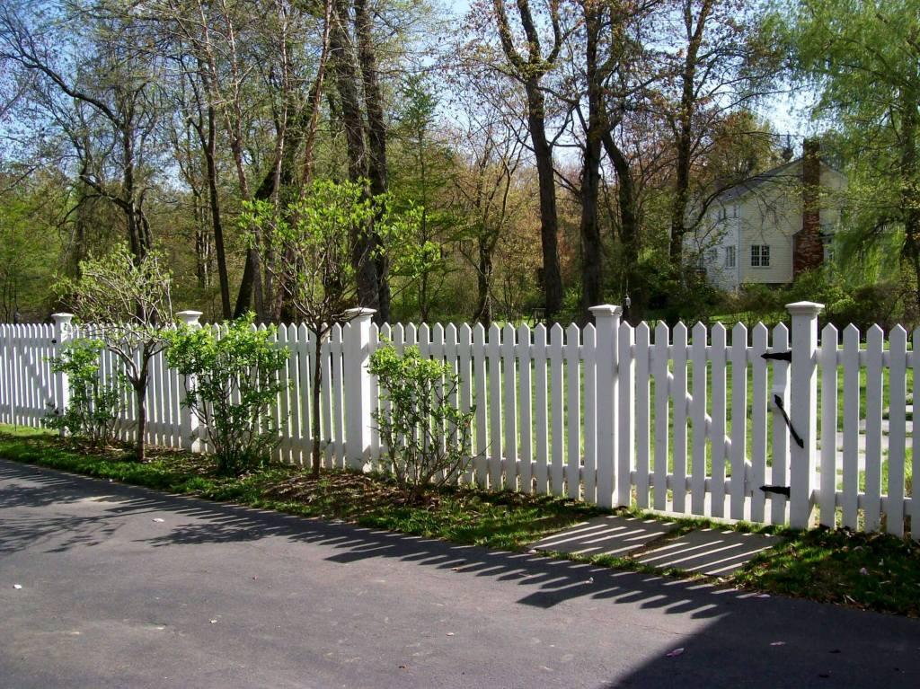 Picket Fences 18